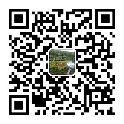 苏州绿化公司